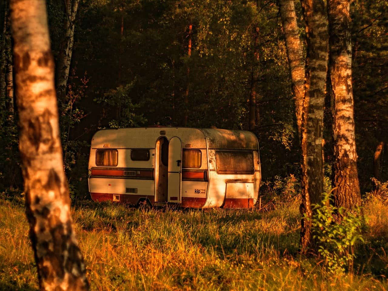 Trailer In Woods